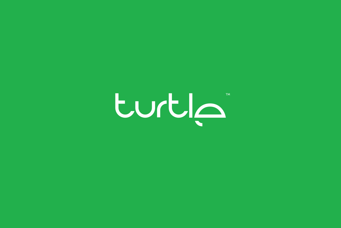 Turtle Logo Design by-Dawid-Koniuszewski-Design